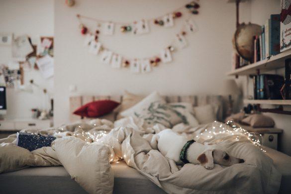 Mein perfektes Weihnachtsmenü - mit Ottoversand