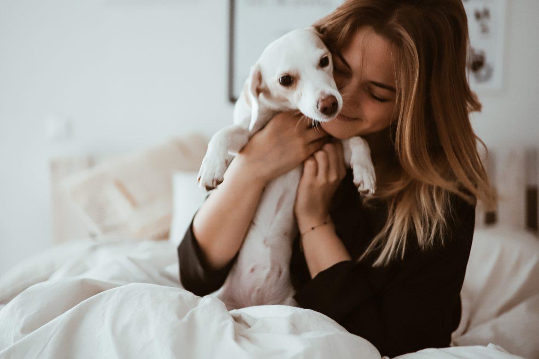 Leben mit Hund - Was ihr wissen wolltet